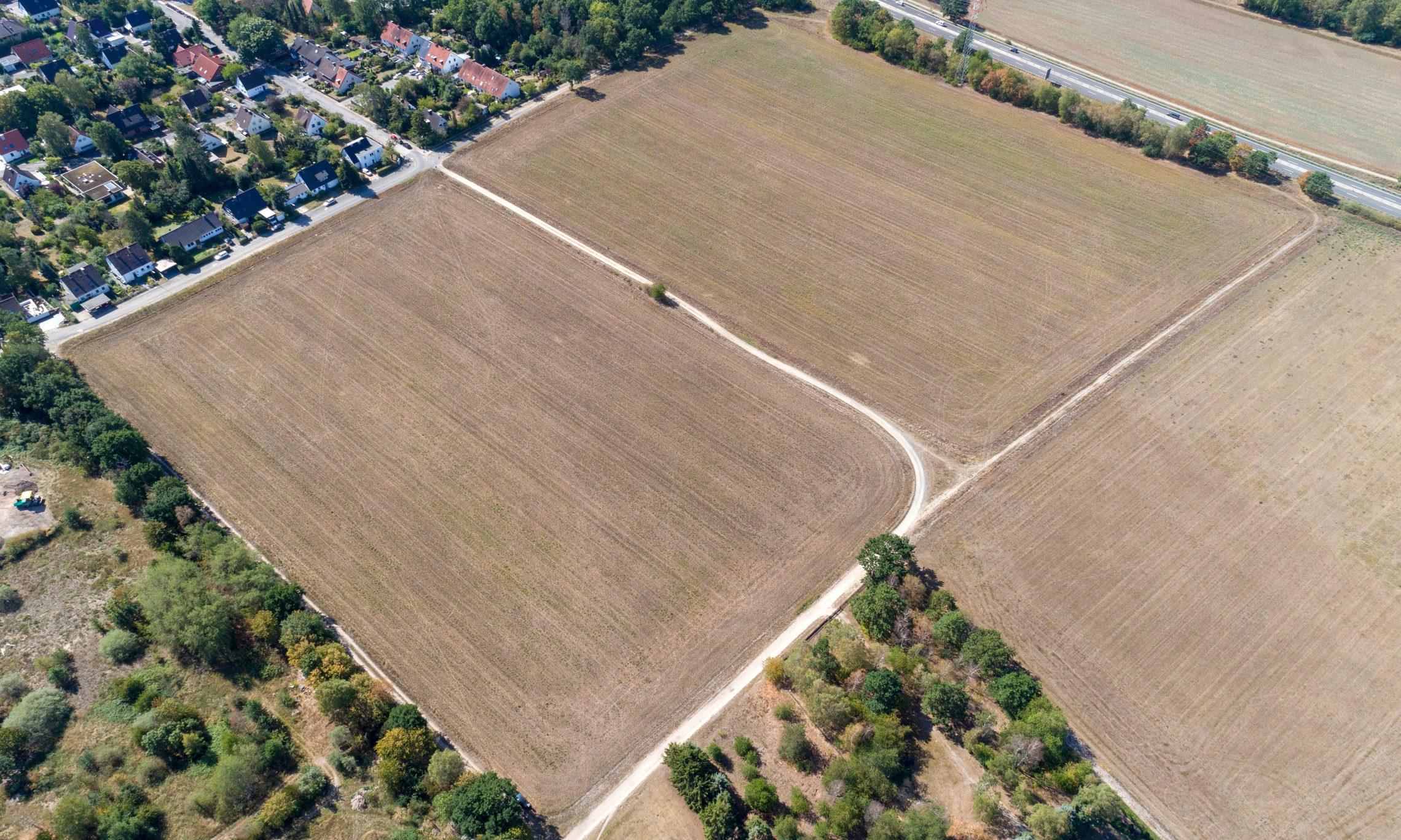 Gifhorn, Hohes Feld (Foto: Bauland Report)