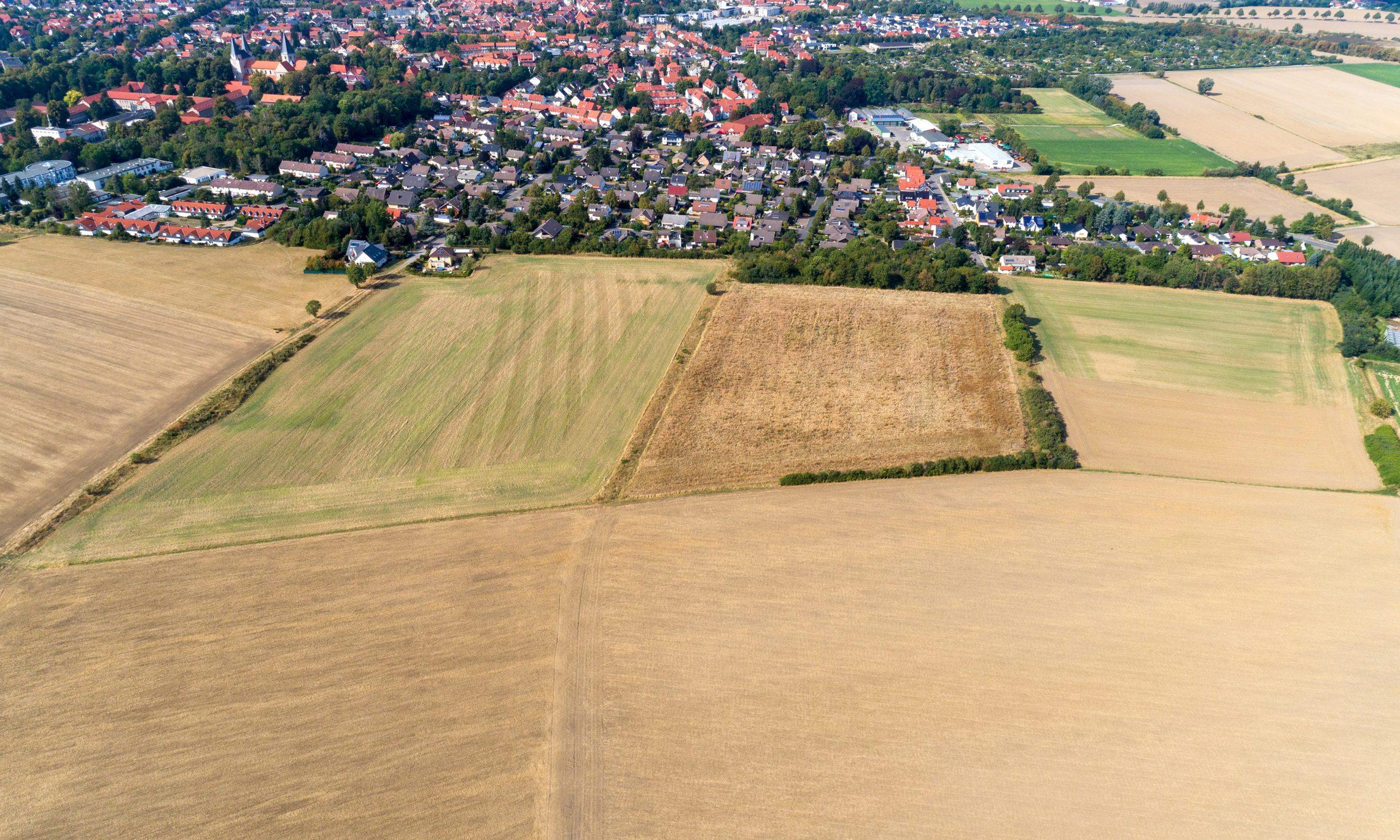 Lutterberg, Am Lutterberg (Foto: Bauland Report)
